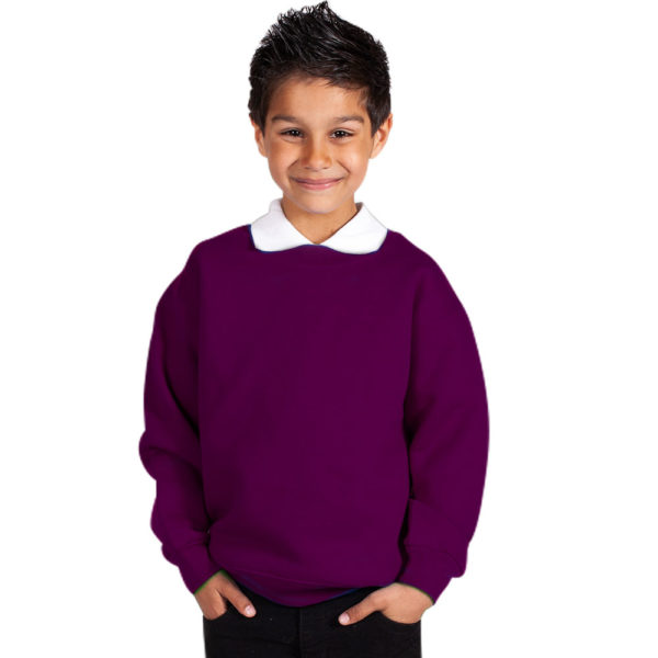 Kids Premium Hi-Spec Set-In Crew Sweatshirt TSK01-purple