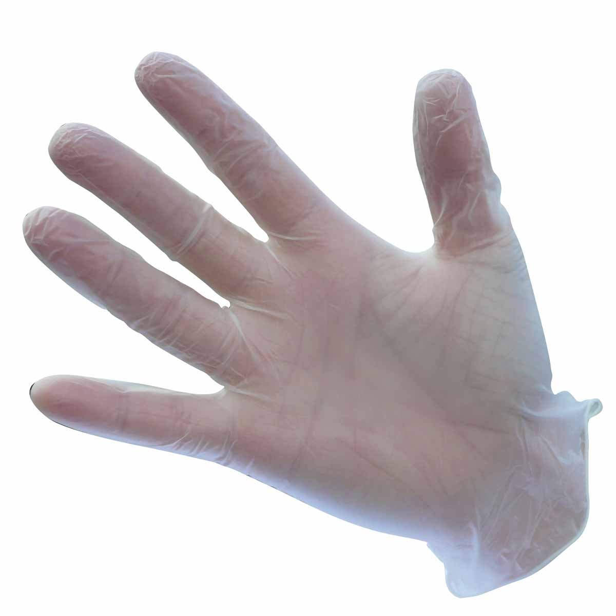Powder Free Vinyl Disposable Glove - A905CLR
